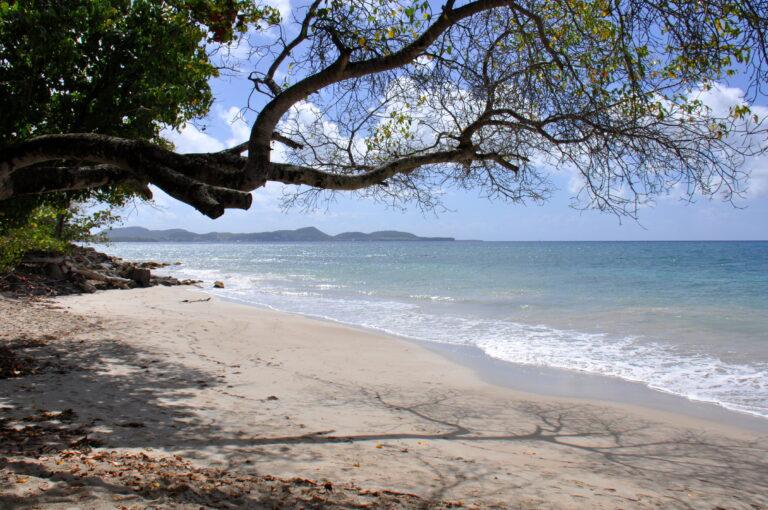 Reizen Van Laere - Martinique & Guadeloupe